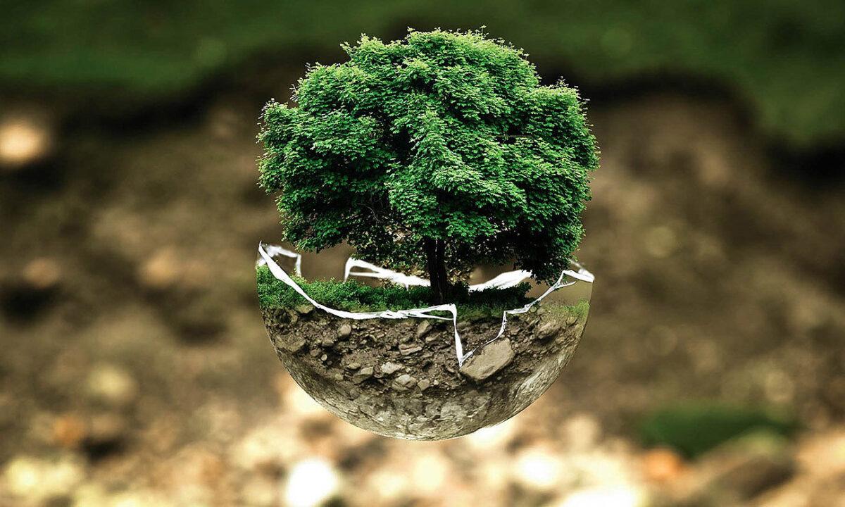 Umweltschutz bei Accupower