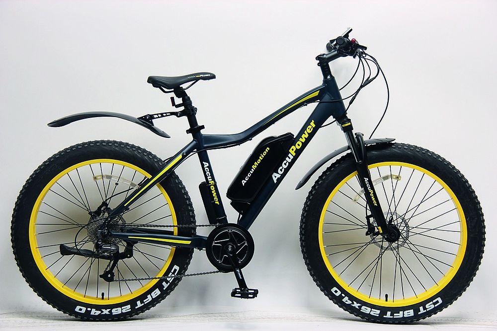 E-Bike-Akku-Careservice AccuPower